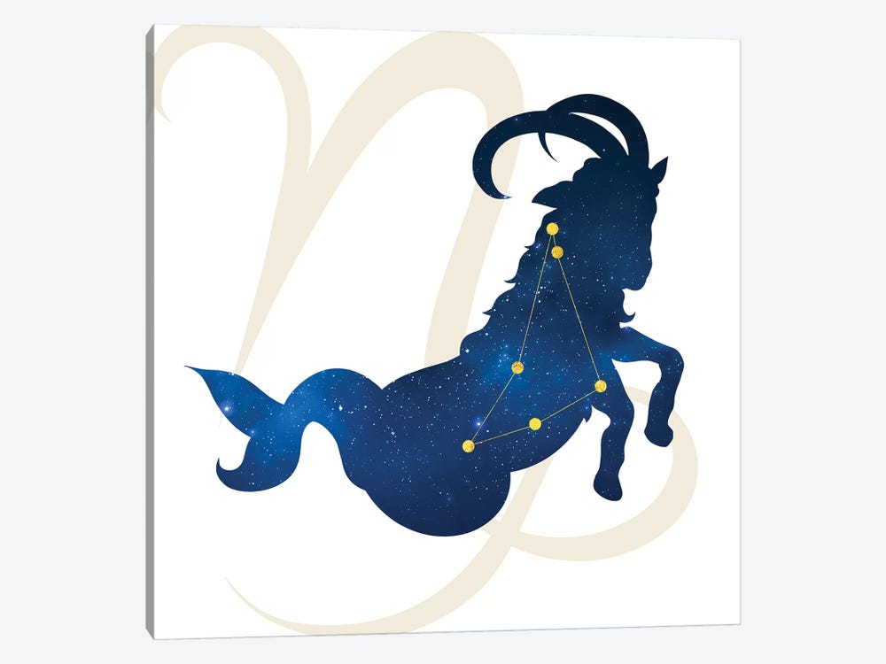 Stars of Capricorn 1-piece Canvas Art