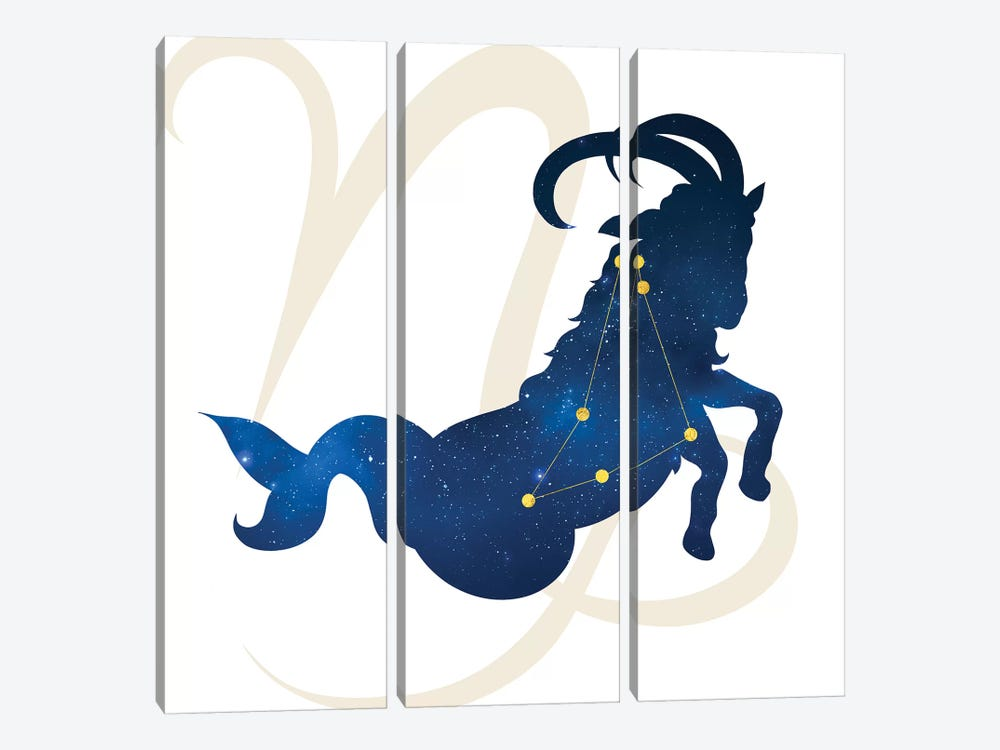 Stars of Capricorn 3-piece Canvas Artwork
