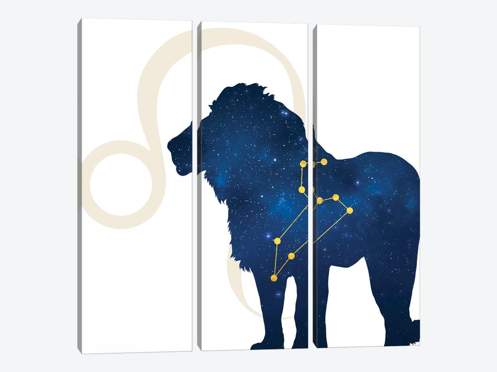 Stars of Leo by 5by5collective 3-piece Canvas Wall Art