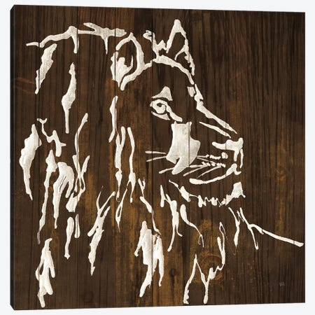 White Lion on Dark Wood Canvas Print #CPA106} by Chris Paschke Canvas Art