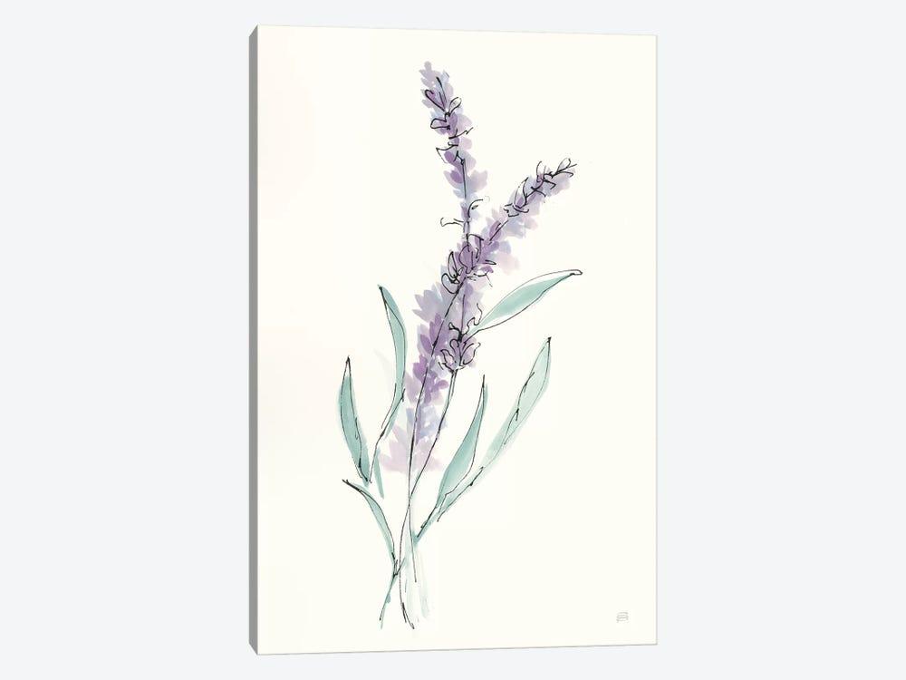 Lavender IV by Chris Paschke 1-piece Canvas Art