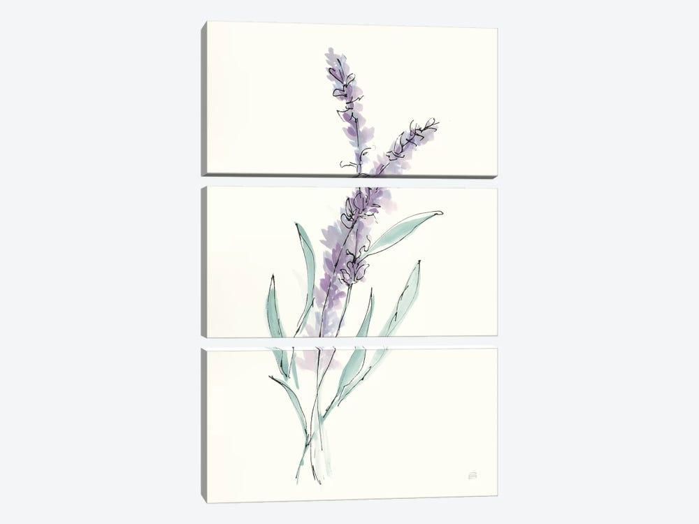 Lavender IV by Chris Paschke 3-piece Canvas Artwork