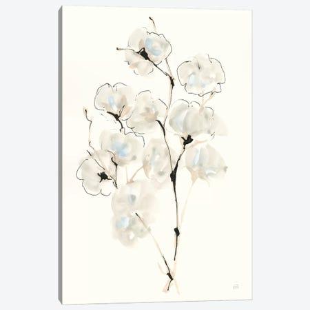 Summer Cotton IV Canvas Print #CPA128} by Chris Paschke Art Print