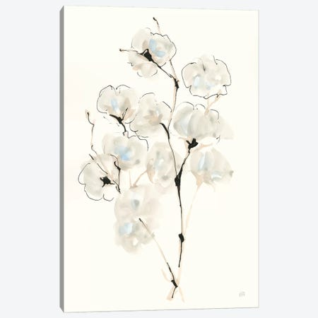 Summer Cotton IV Canvas Print #CPA128} by Chris Paschke Art Print