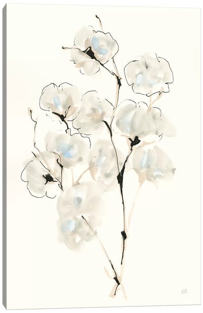 Summer Cotton IV Canvas Art Print