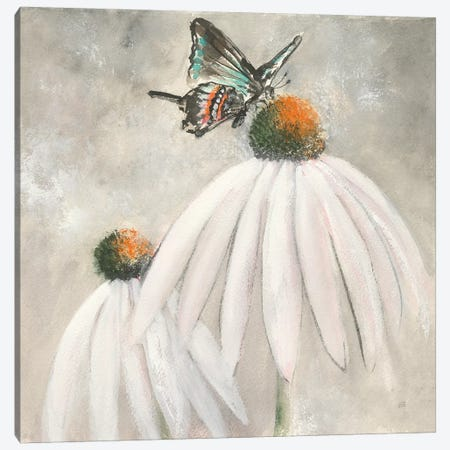 Butterflies are Free I 3-Piece Canvas #CPA12} by Chris Paschke Canvas Art