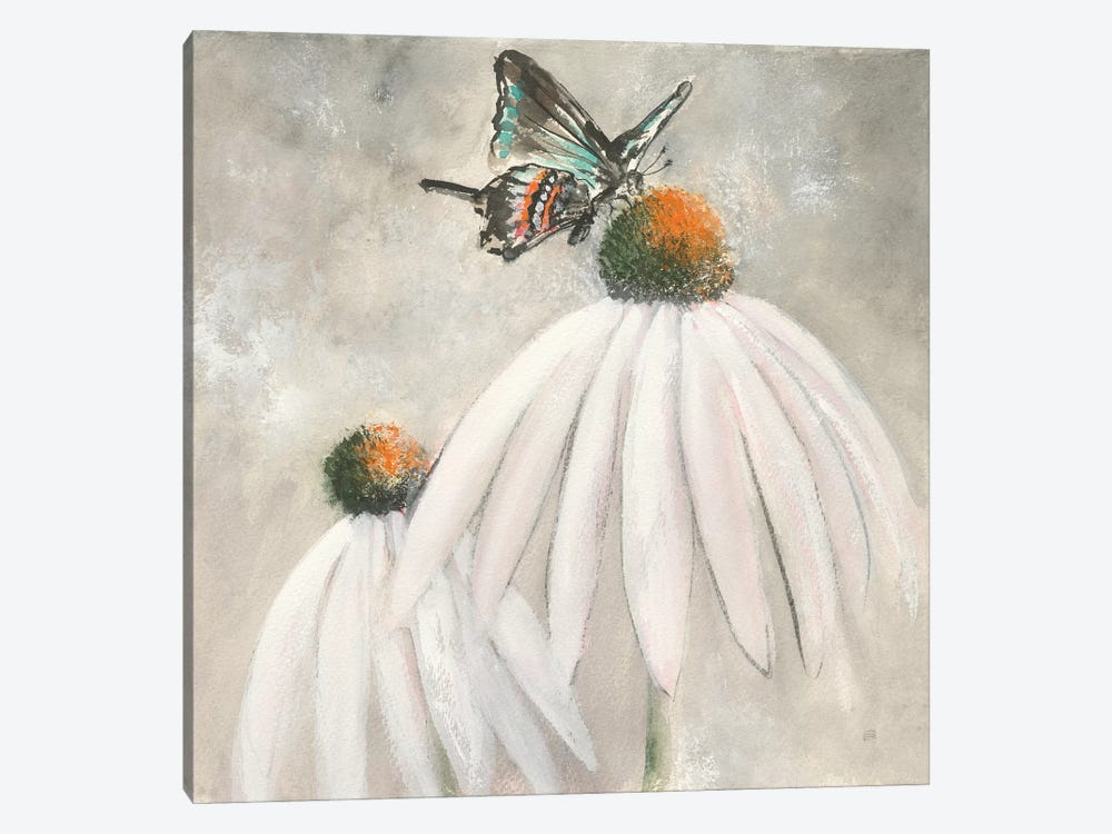 Butterflies are Free I by Chris Paschke 1-piece Canvas Print