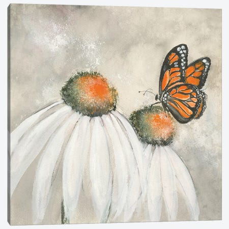 Butterflies are Free II Canvas Print #CPA13} by Chris Paschke Canvas Artwork