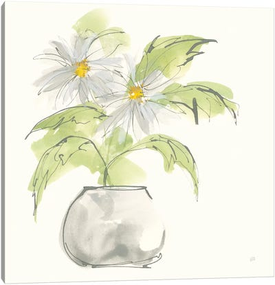 Plant Daisy I Canvas Art Print