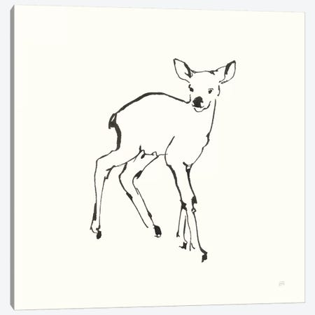 Line Fawn Canvas Print #CPA168} by Chris Paschke Art Print