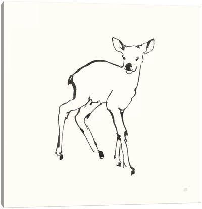 Line Fawn Canvas Art Print