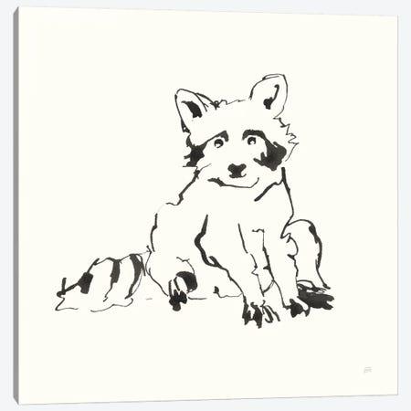Line Raccoon Canvas Print #CPA170} by Chris Paschke Canvas Art