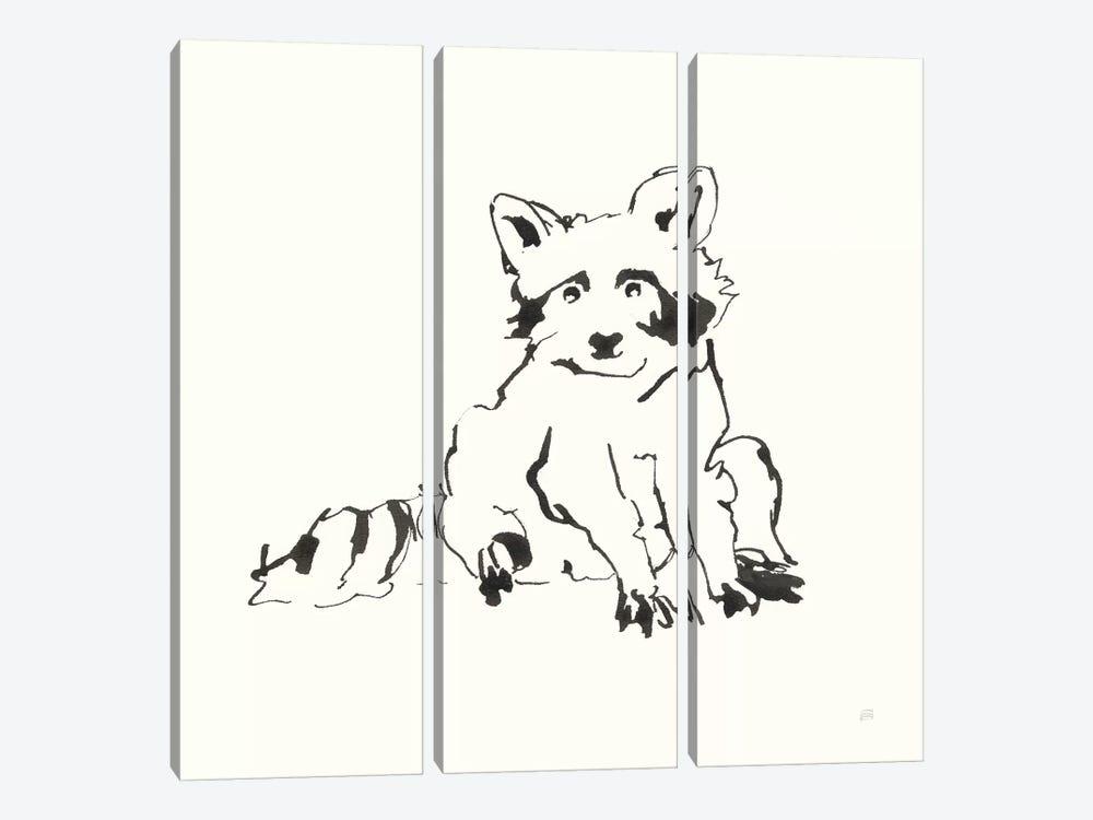 Line Raccoon by Chris Paschke 3-piece Art Print
