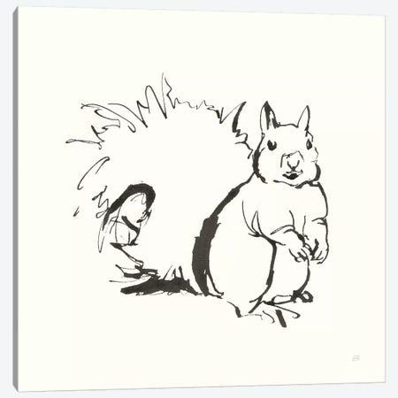 Line Squirrel Canvas Print #CPA171} by Chris Paschke Canvas Artwork