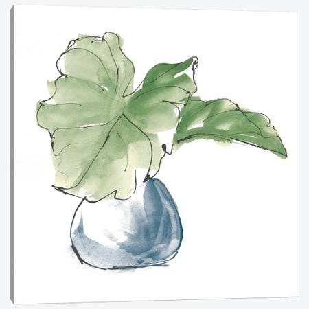 Plant Big Leaf I Dark Green Canvas Print #CPA172} by Chris Paschke Canvas Artwork
