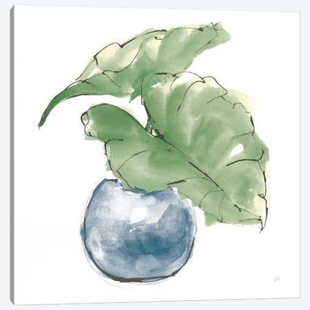Plant Big Leaf III Dark Green Canvas Print #CPA174} by Chris Paschke Canvas Art Print