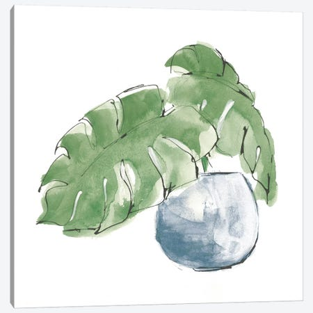 Plant Big Leaf IV Dark Green Canvas Print #CPA175} by Chris Paschke Canvas Art Print