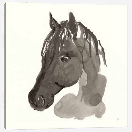 Horse Portrait II Canvas Print #CPA195} by Chris Paschke Art Print