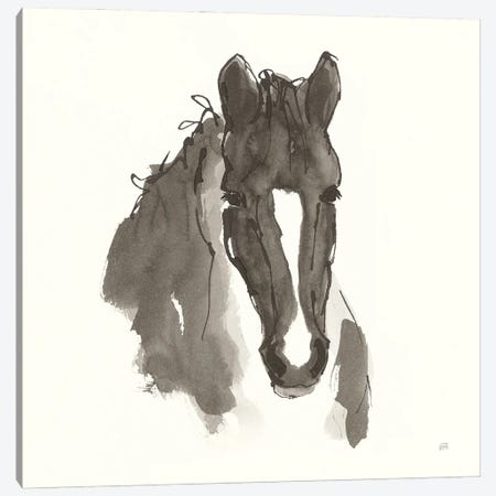 Horse Portrait III 3-Piece Canvas #CPA196} by Chris Paschke Art Print