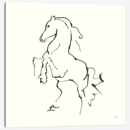 Line Horse I Canvas Print #CPA198} by Chris Paschke Canvas Art