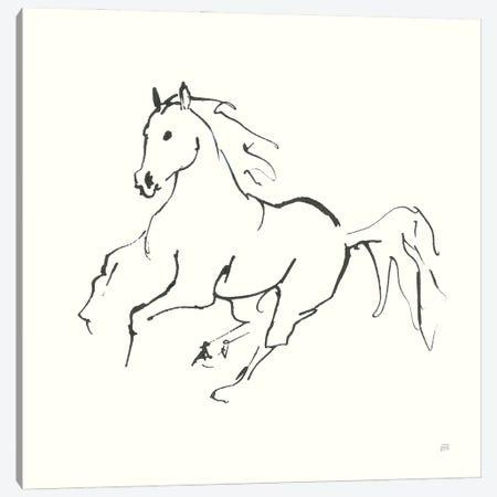 Line Horse III Canvas Print #CPA199} by Chris Paschke Canvas Art