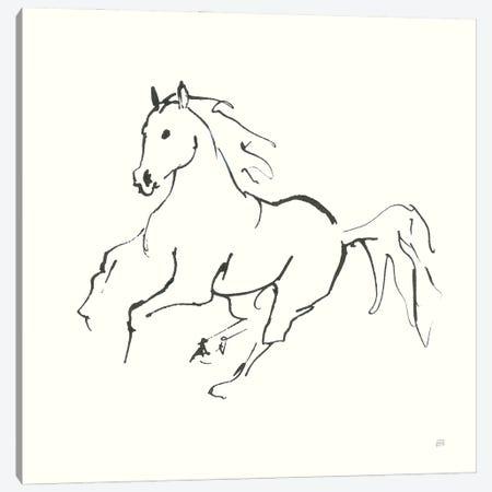 Line Horse III Canvas Print #CPA199} by Chris Paschke Canvas Art