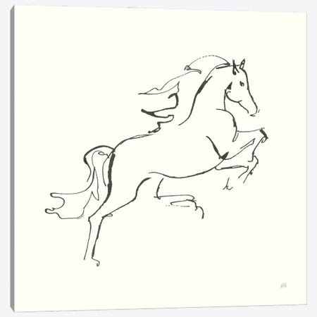 Line Horse VI Canvas Print #CPA200} by Chris Paschke Canvas Art