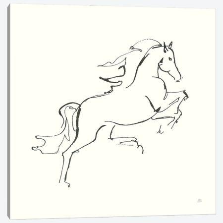 Line Horse VI Canvas Print #CPA200} by Chris Paschke Canvas Art