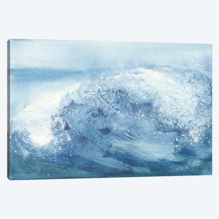 In the Blue IV Canvas Print #CPA210} by Chris Paschke Canvas Art Print