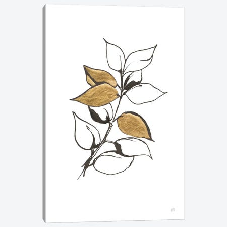 Leafed VII Canvas Print #CPA218} by Chris Paschke Canvas Print