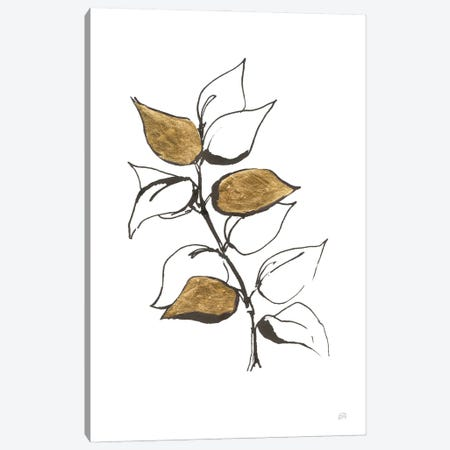 Leafed VIII Canvas Print #CPA219} by Chris Paschke Canvas Print