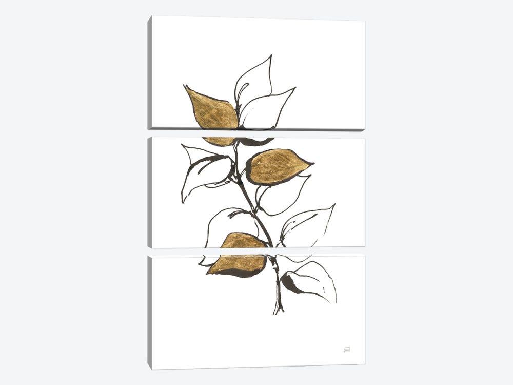 Leafed VIII by Chris Paschke 3-piece Canvas Art