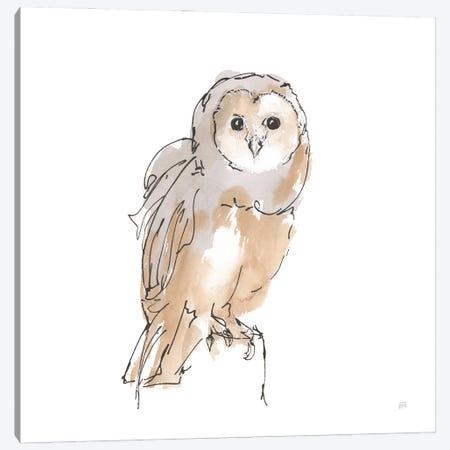 Barn Owl Viii Canvas Print #CPA234} by Chris Paschke Canvas Artwork