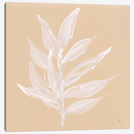 Leaf Study IV Canvas Print #CPA254} by Chris Paschke Canvas Art