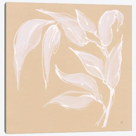 Leaf Study V Canvas Print #CPA255} by Chris Paschke Canvas Wall Art