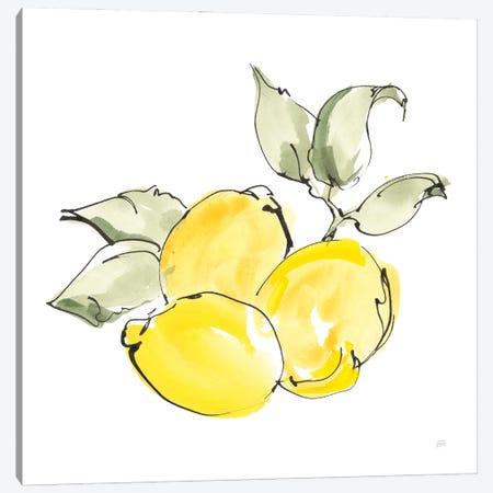 Lemons II Canvas Print #CPA299} by Chris Paschke Art Print