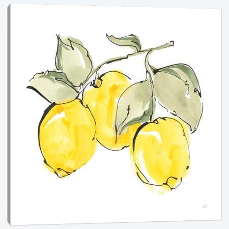 Lemons IV Canvas Print #CPA300} by Chris Paschke Art Print