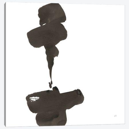 Swash III Canvas Print #CPA317} by Chris Paschke Canvas Print