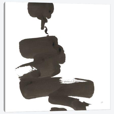 Swash IV Canvas Print #CPA318} by Chris Paschke Canvas Art
