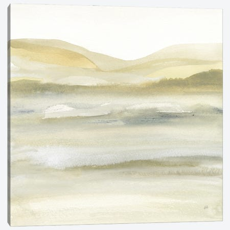 Valleyscape III Canvas Print #CPA326} by Chris Paschke Canvas Artwork