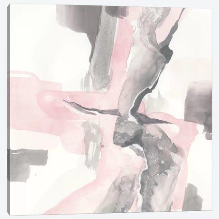 Blushing Grey I Canvas Print #CPA38} by Chris Paschke Canvas Artwork