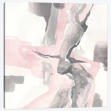 Blushing Grey I Canvas Print #CPA38} by Chris Paschke Canvas Artwork