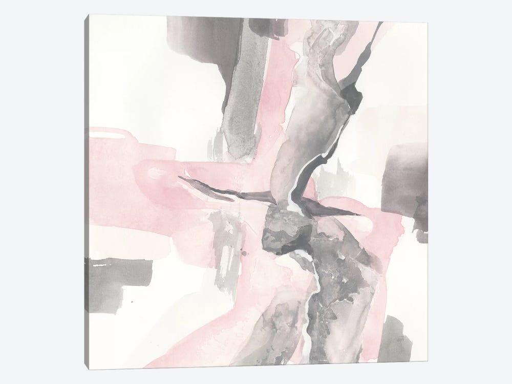 Blushing Grey I by Chris Paschke 1-piece Canvas Art Print