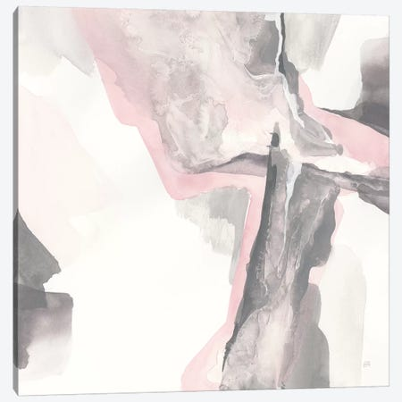 Blushing Grey II Canvas Print #CPA39} by Chris Paschke Canvas Artwork