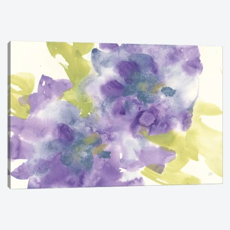 Violet And Gray I Canvas Print #CPA48} by Chris Paschke Canvas Art Print