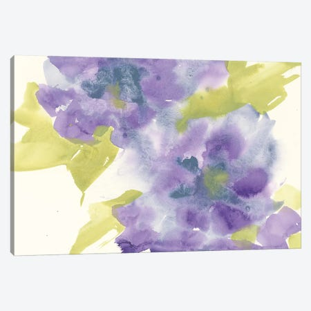 Violet And Gray II Canvas Print #CPA49} by Chris Paschke Art Print