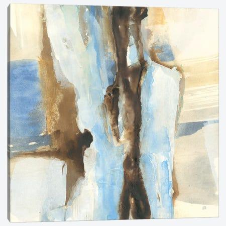 River Run I Canvas Print #CPA4} by Chris Paschke Canvas Art Print