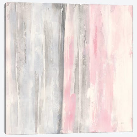 Whitewashed Blush I Canvas Print #CPA50} by Chris Paschke Canvas Art
