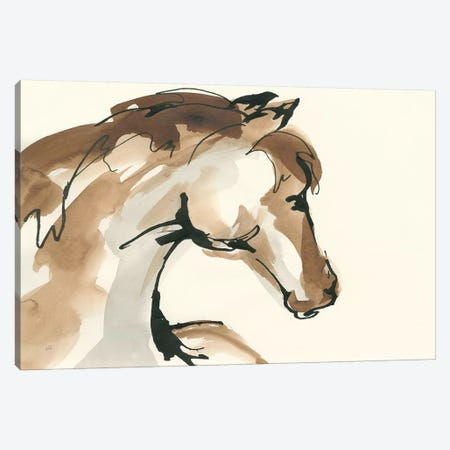 Horse Head I Canvas Print #CPA58} by Chris Paschke Canvas Wall Art