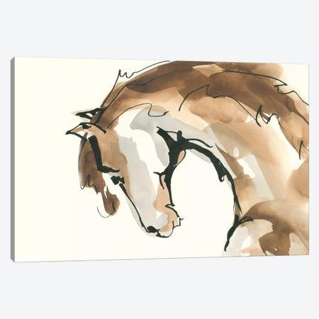 Horse Head II Canvas Print #CPA59} by Chris Paschke Canvas Art